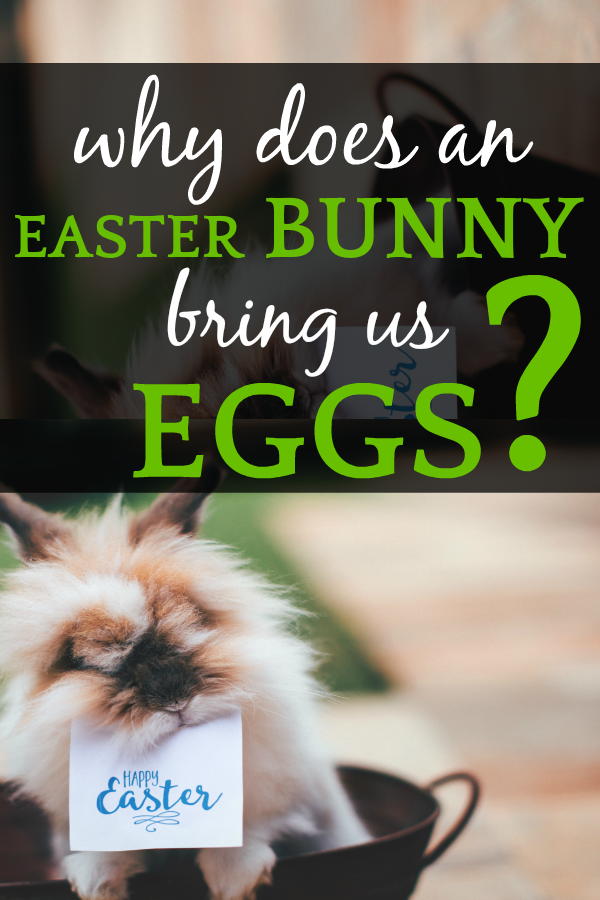 Easter Bunny History | Where Did the Easter Bunny Come From?