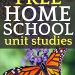 How To Create a Unit Study for FREE! monarch butterfly on a tall purple flower
