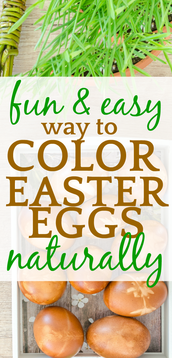 Natural Easter Egg Dye | How to Dye Easter Eggs Without Chemicals