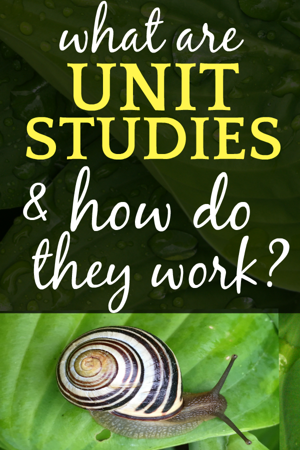 What are HOMESCHOOL UNIT STUDIES and HOW DO THEY WORK?