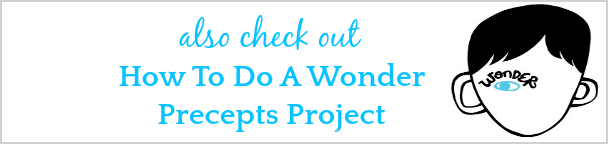 How To Do A Wonder Precepts Project