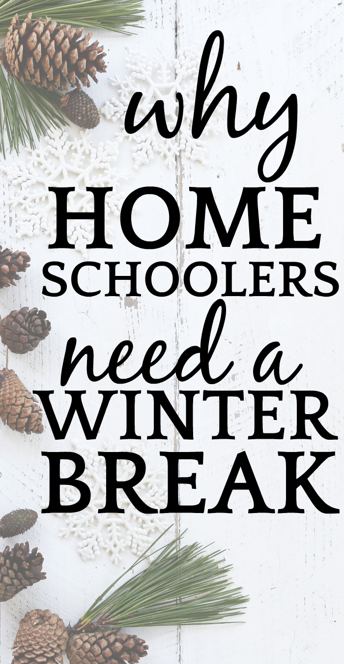 5 Tips on How to Do a Homeschool Winter Break