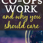 How Do Homeschool Co Ops Work And WhyYou Should Care