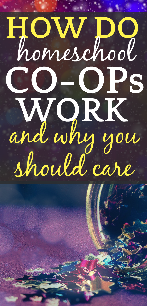 How Do Homeschool Co Ops Work And WhyYou Should Care????