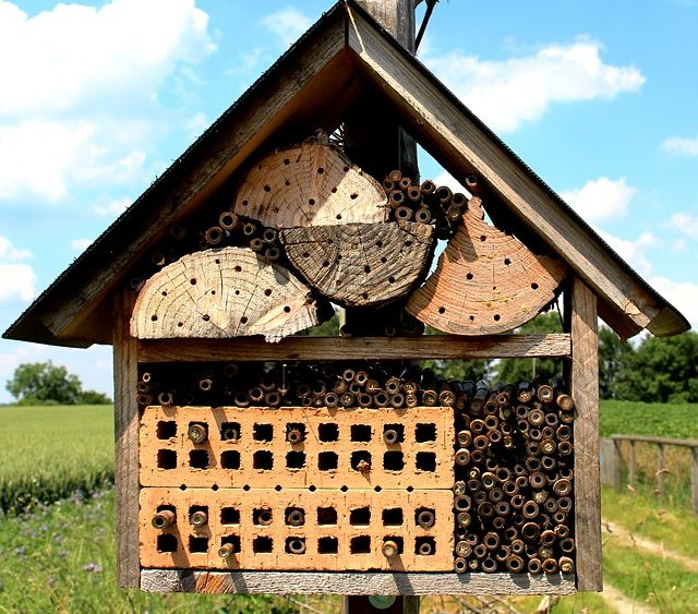 bee house made out of wood