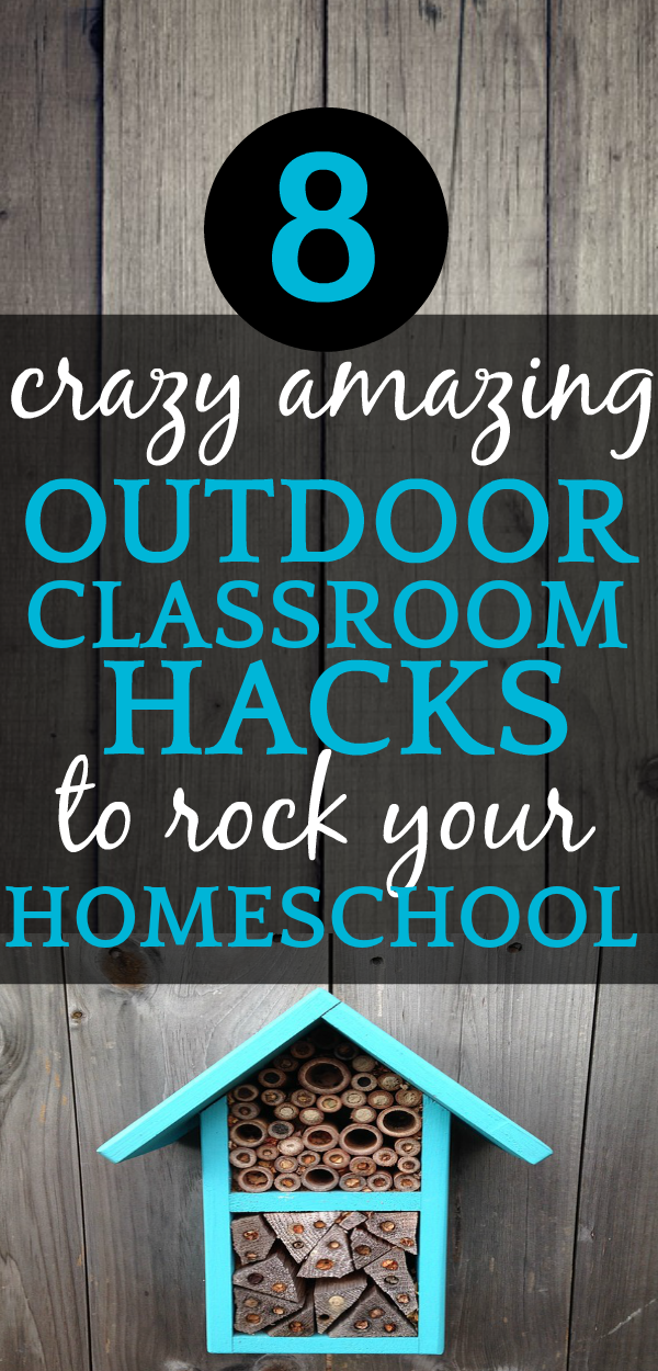 8 CRAZY AMAZING Outdoor Classrooms + Nature Learning Space Ideas to Rock Your Homeschooling & Learning [UPDATED] Outdoor Natural Classroom Ideas and Benefits of Being Outside  #nature #natureclass #natureschool #outsideplayhouse #outsidefurniture #outside #play #playground #classroom #homeschool #homeschooling #homeschoolers #wildandfree #outdoorlearning #outdoor