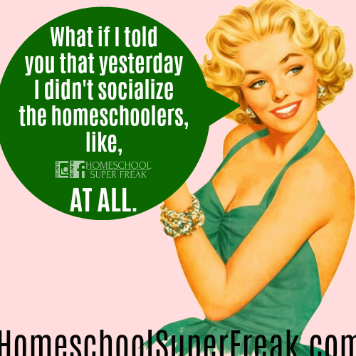 Funny Homeschool Memes: Homeschool Socialization and Homeschool Friends: drawing of woman with blond hair smiling and looking off to side