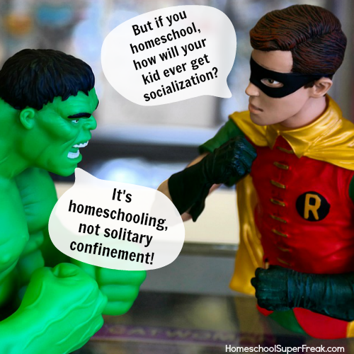 Funny Homeschool Meme: Homeschool Socialization