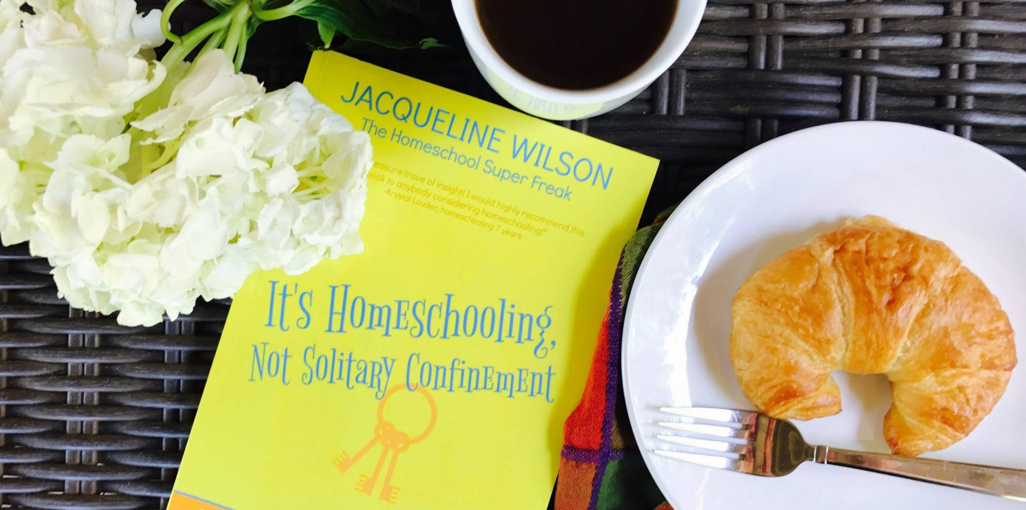 HOMESCHOOLING BOOK: It's Homeschooling, Not Solitary Confinement (AFFILIATE)