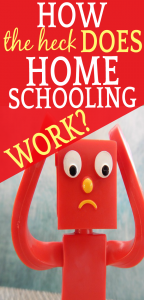 How Does Homeschooling Work? 10 Common Homeschool Questions Answered toy holding head with panic on face