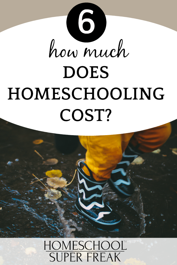 #6 IN HOW TO HOMESCHOOL SERIES: How much does homeschooling cost?