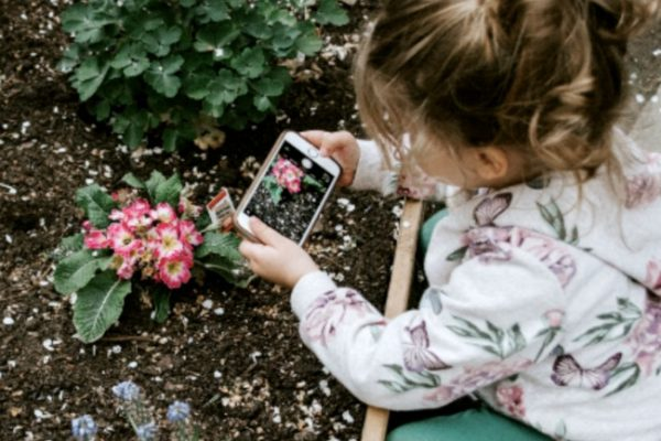 #18 IN HOW TO HOMESCHOOL SERIES: How to homeschool kindergarten and preschool. young girl taking a picture of a flower with a phone