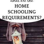 #4 IN HOW TO HOMESCHOOL SERIES: What are homeschooling requirements?