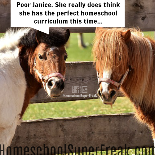 Funny Homeschooling Memes #3: Don't Be Like Janice on That Best Homeschool Curriculum Search