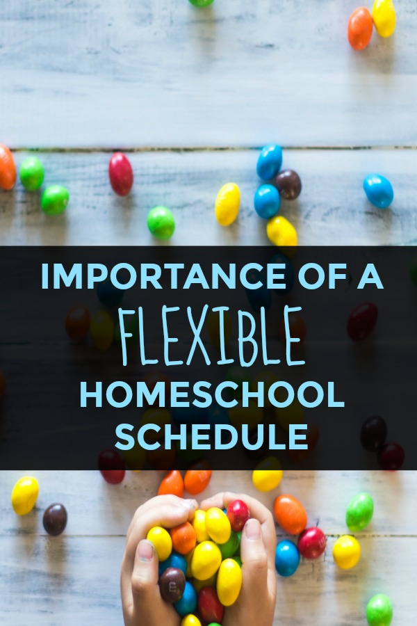If you're not using a flexible homeschool schedule, you're really missing out on a major PRO of homeschooling and instilling a lifelong love of learning!