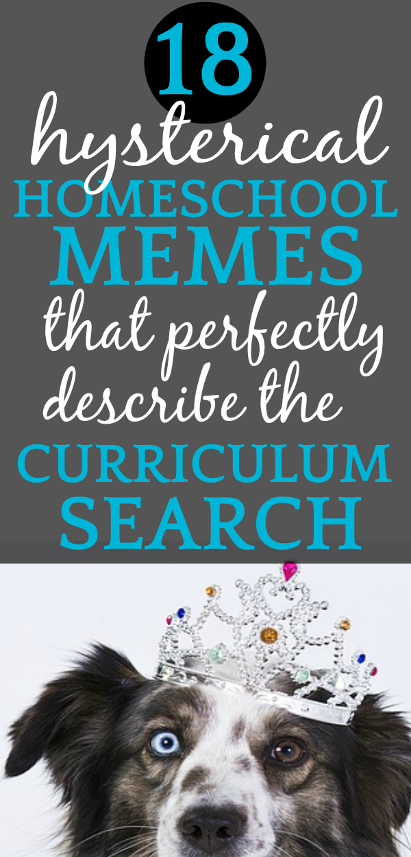Homeschool Humor | 18 Funny Homeschooling Memes That Perfectly Explain the Pain of the Perfect Homeschool Curriculum Search