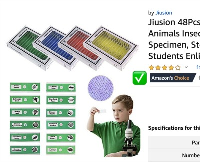Amazon's Choice Prepared Slides for Kids