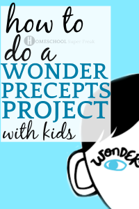 How To Do A Wonder Precepts Project With Kids face drawing from the book wonder