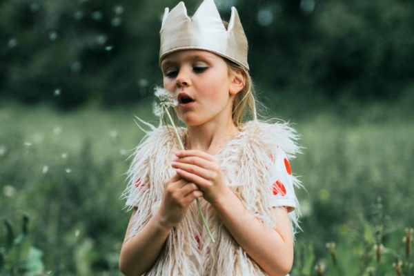 little girl with a crown in a green field blowing dandelion seeds