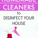 Homemade Cleaner Recipes to Disinfect Your House