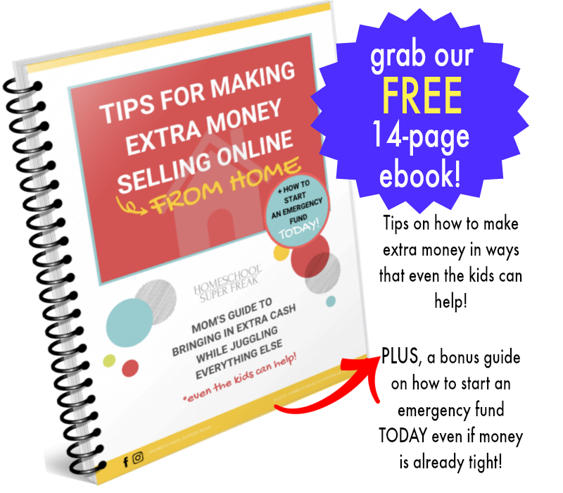 Tips for Making Extra Money From Home Selling Online book cover